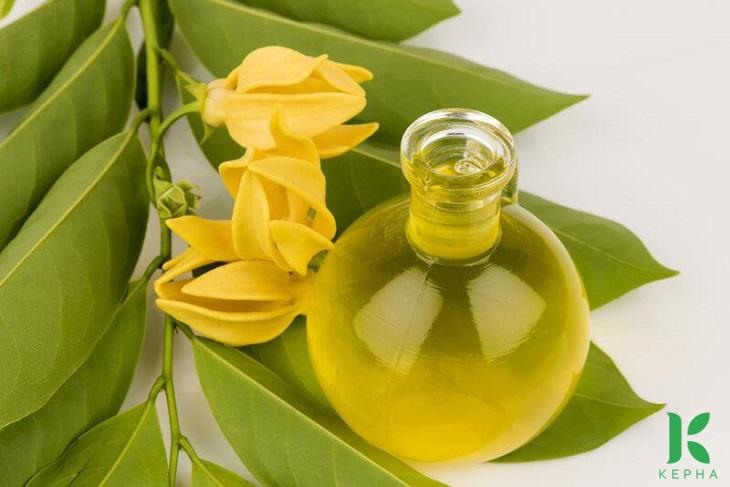 tinh dầu ngọc lan tây có tác dụng gì