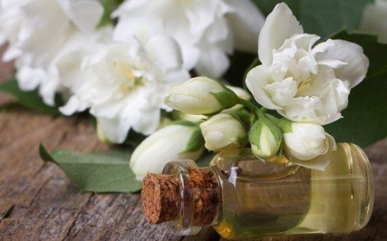 Cách sử dụng tinh dầu hoa nhài