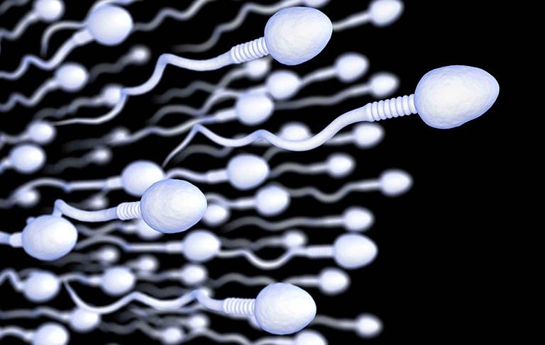 Các nhân tố ảnh hưởng đến tuổi thọ của tinh dịch