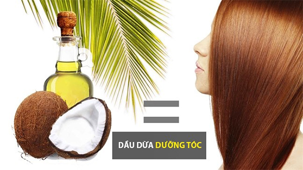 Dầu dừa nuôi dưỡng tóc và giảm gàu