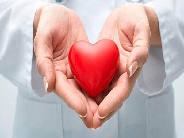 Bánh yến mạch tốt cho tim mạch