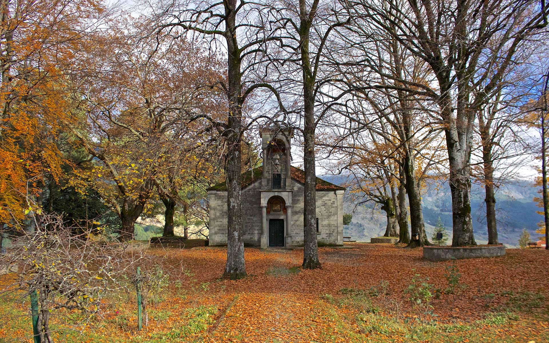 church-in-forest