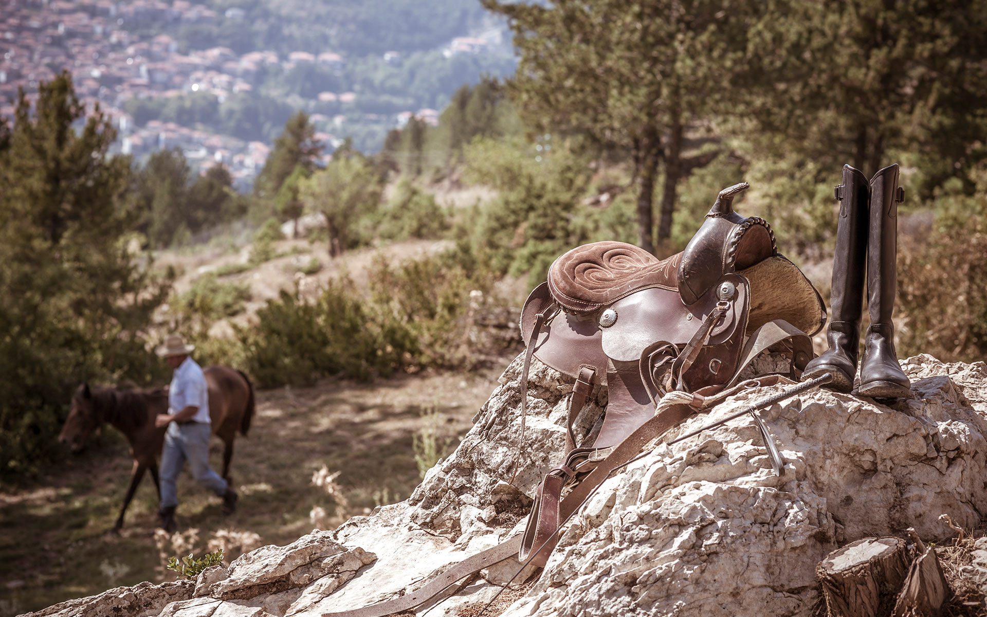 Grand Forest Metsovo horseback riding