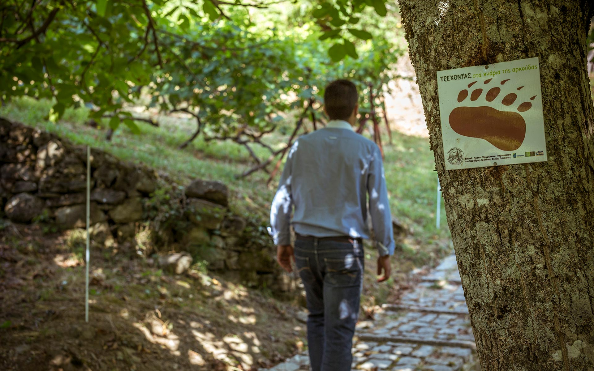 Grand Forest Metsovo nature trail