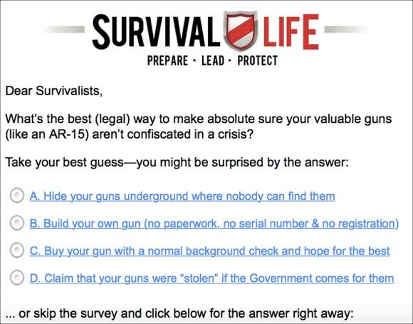 Digital Marketer Survival Life Faux Survey Email