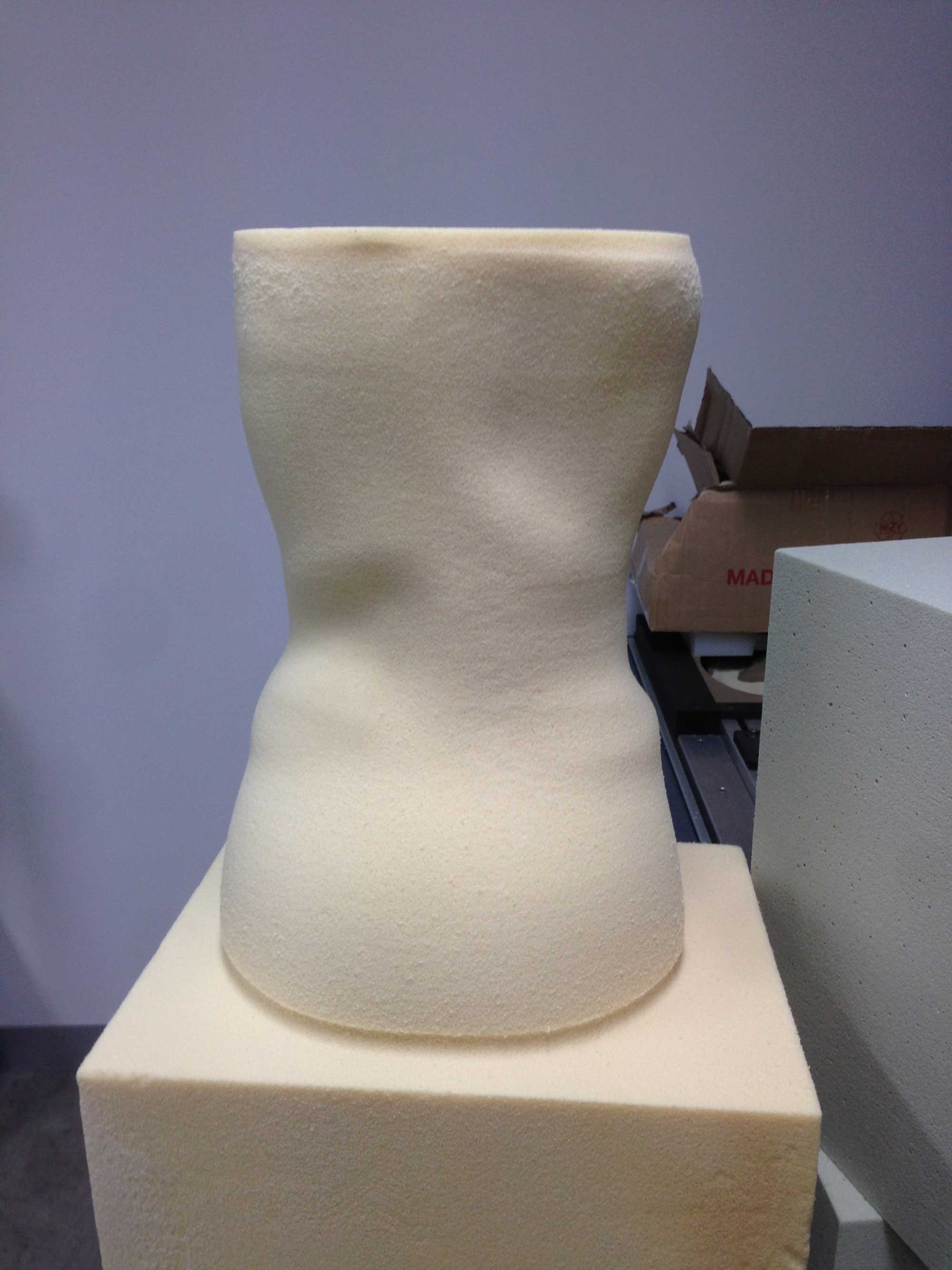 Foam Carving Spinal