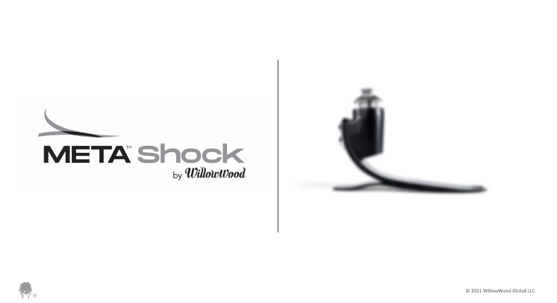 META Shock Foot Webinar