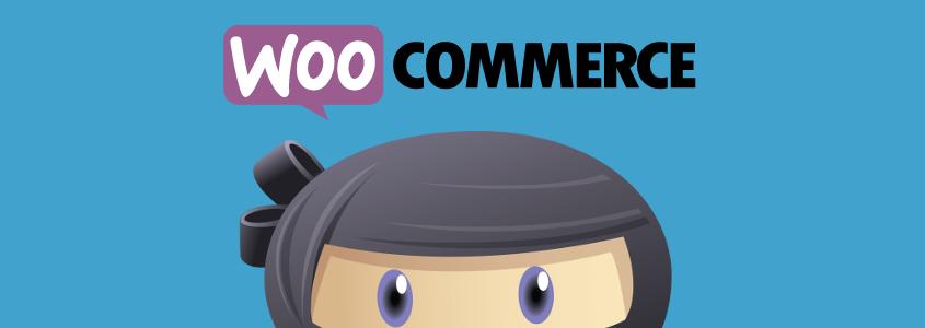 WP Adverts – WooCommerce Integration Addon