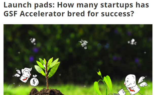 How many startups has GSF accelerator bred for success
