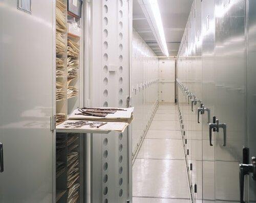 Herbarium Cabinets model 241 (1).jpg