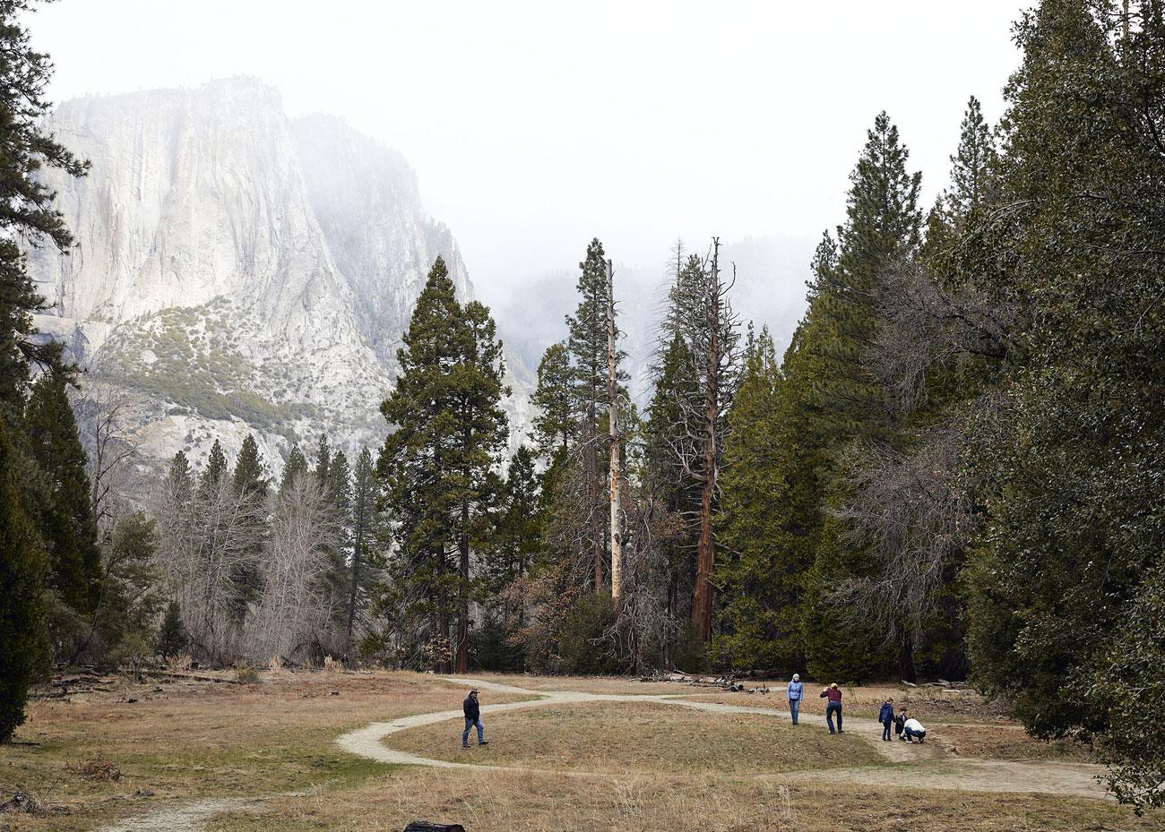 David Chatfield Photography - Yosemite