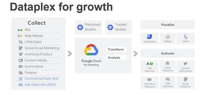 dataplex for growth