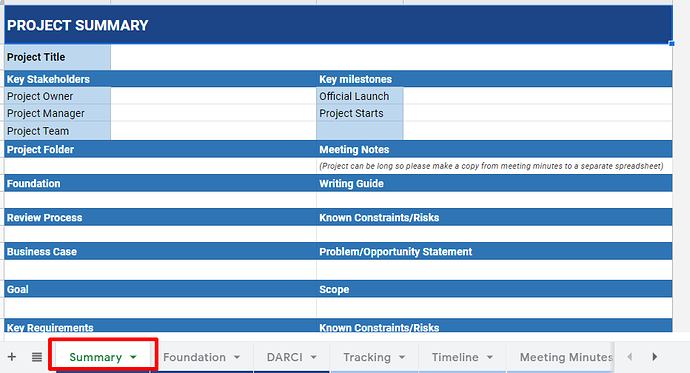 Template quản lý dự án Summary of the Project (Project Overview)