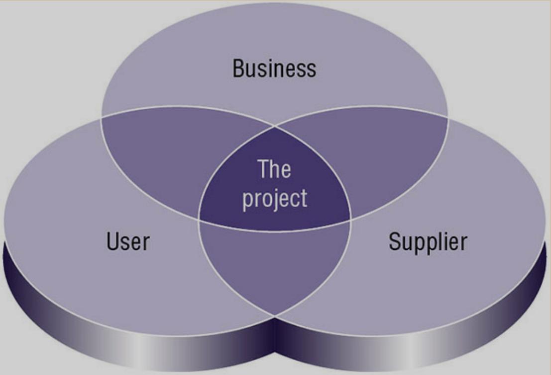 PRINCE2 Project Interests - Nhận diện các nhóm lợi ích của dự án