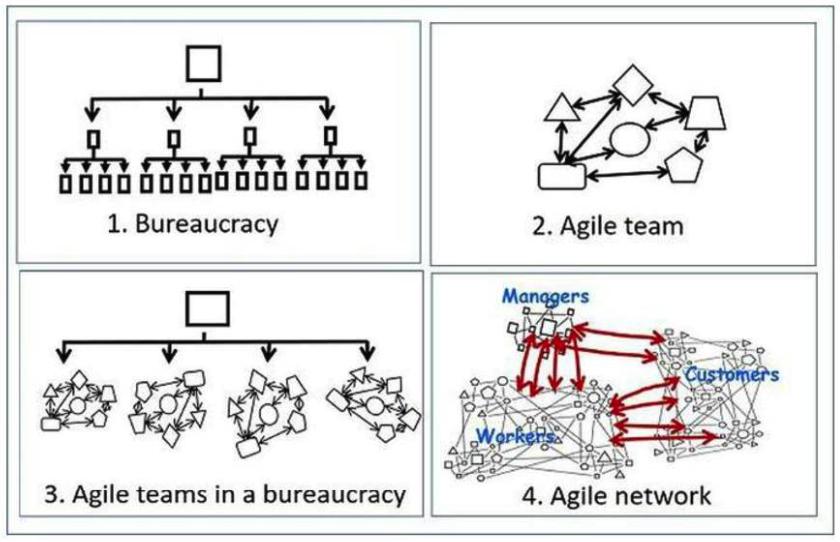 Cơ cấu tổ chức Team Agile