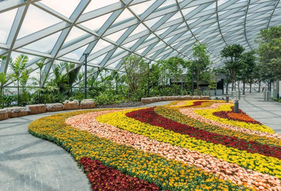Petal Gardens