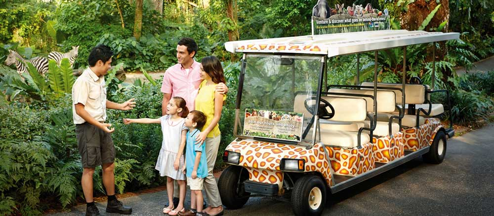 Private buggy tour
