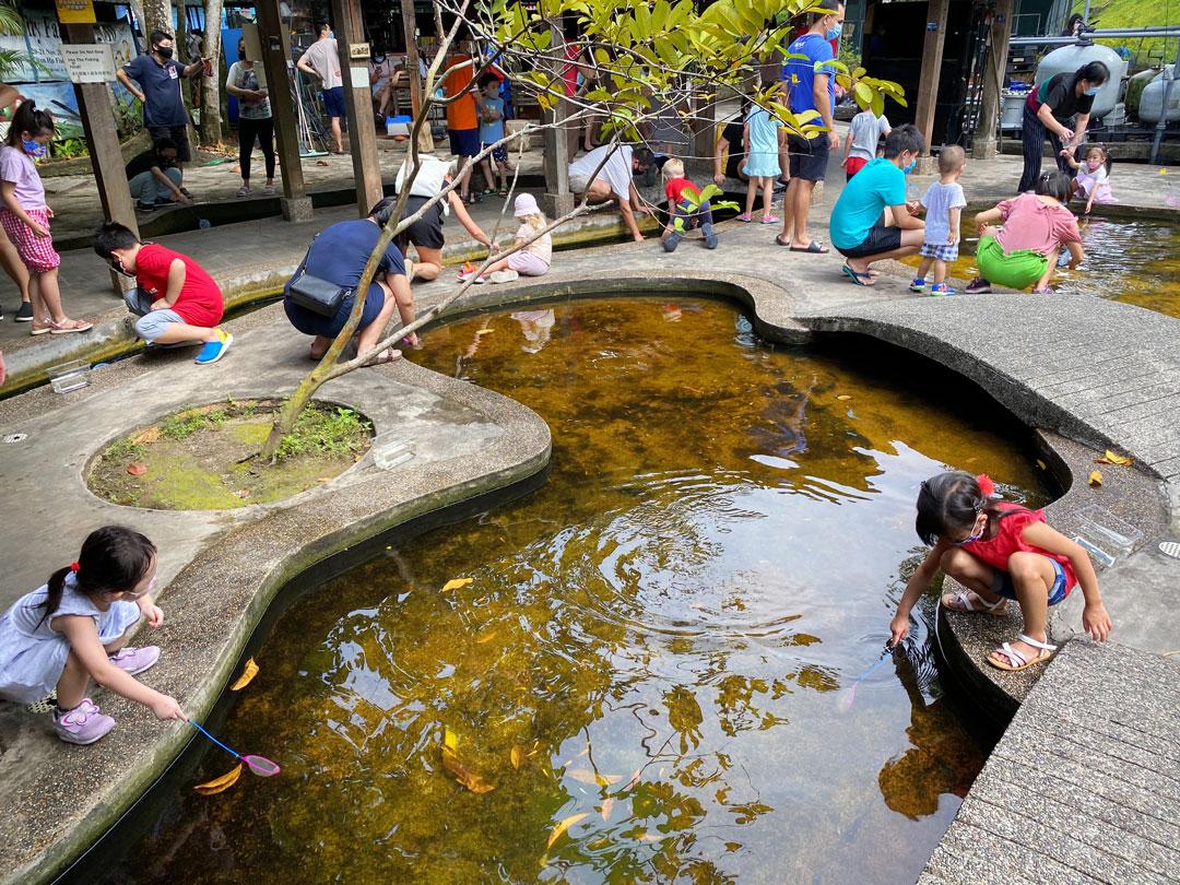 Qian Hu Fish Farm