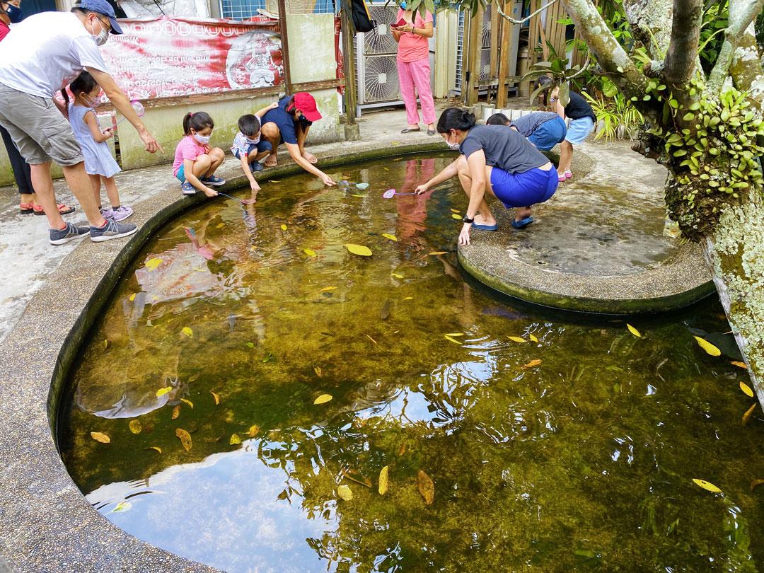 Longkang Fishing Qian Hu Fish Farm