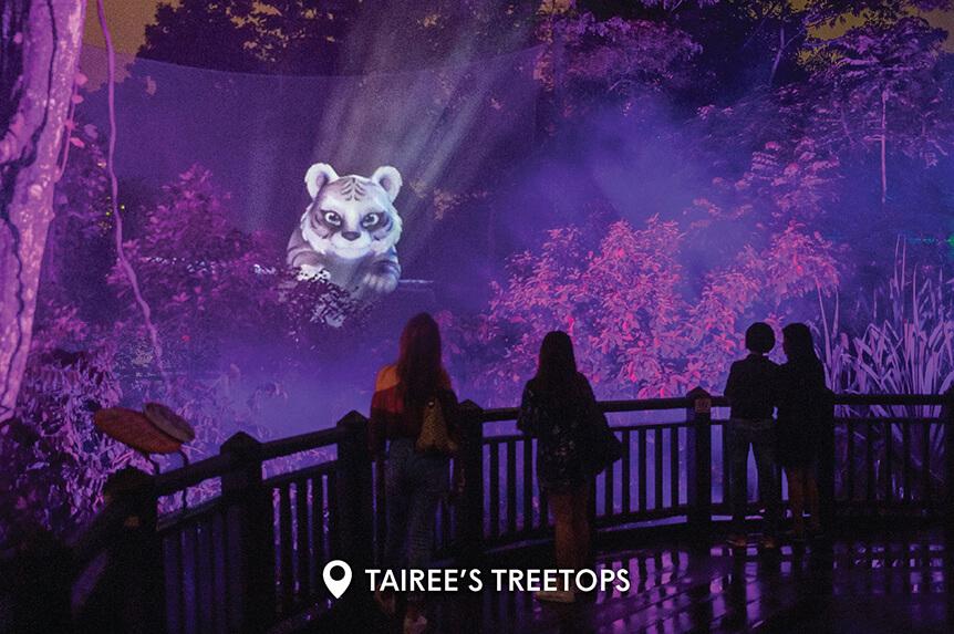 Rainforest Lumina Season 3