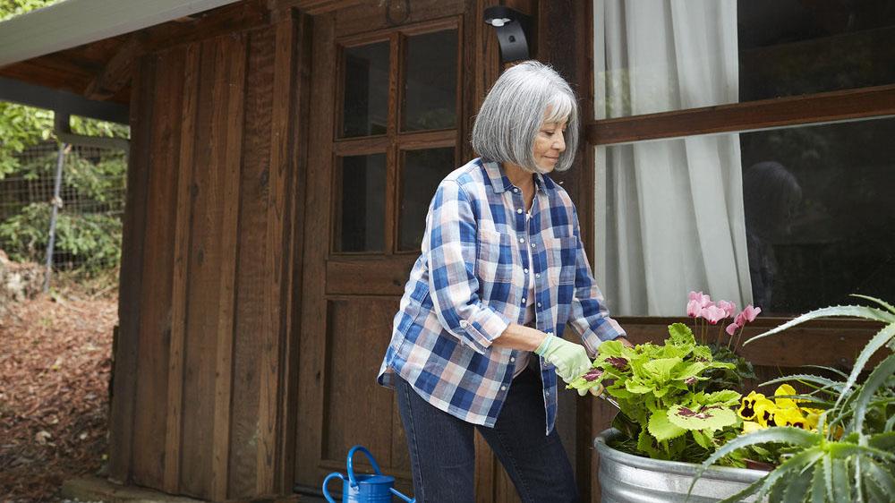 Older woman pruning her plants.