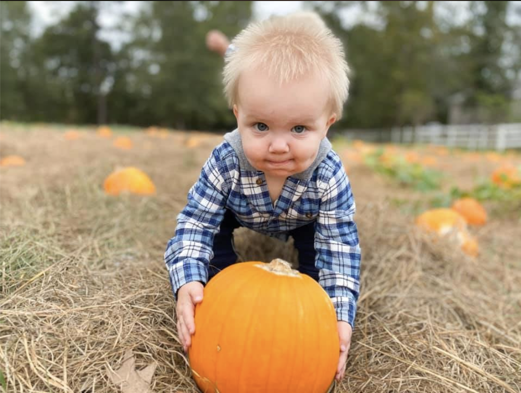 7 Perfect Pumpkin Patches to Celebrate the Fall Season!