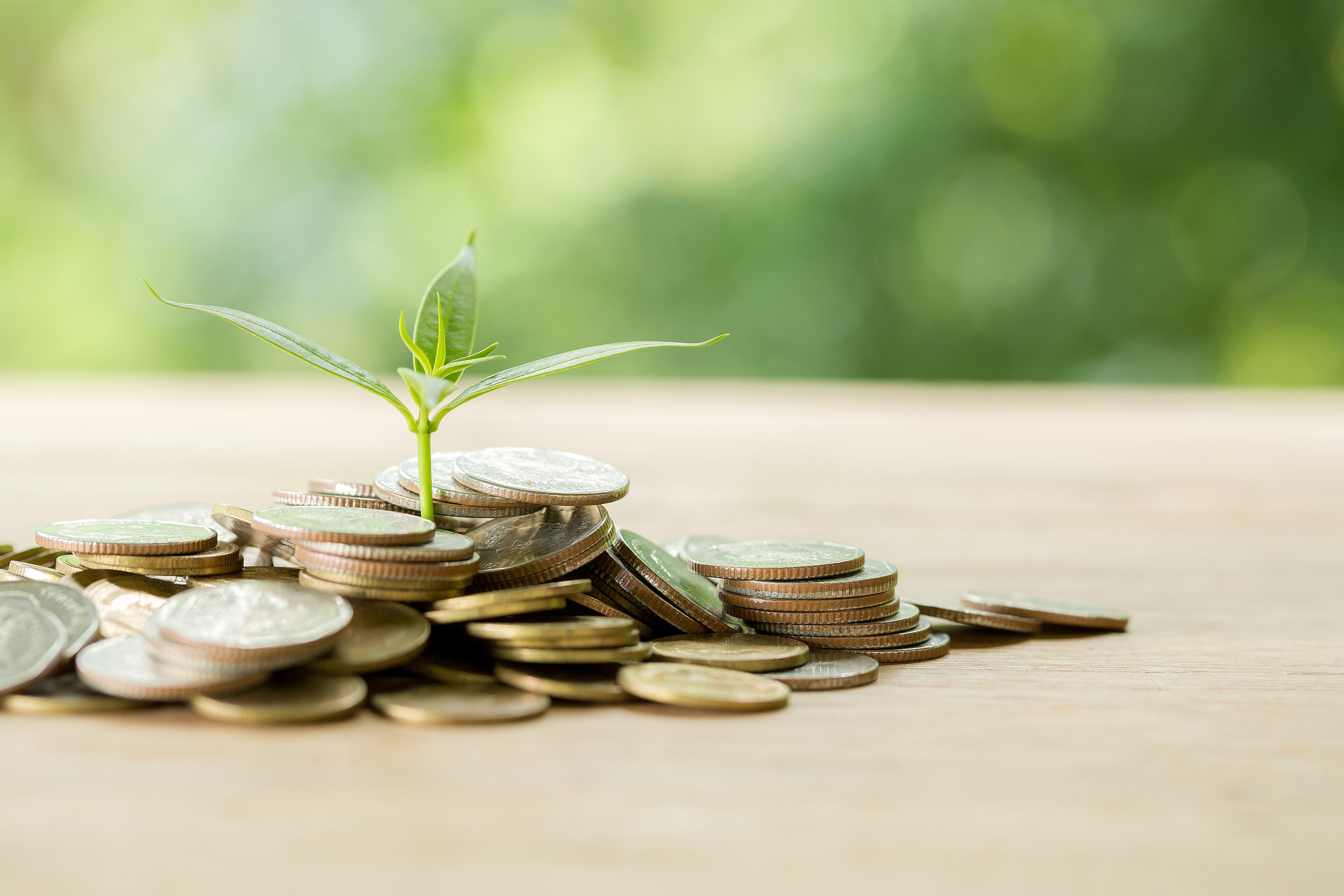 A empresa pode ser prioridade de investimento por estar listada no ISE