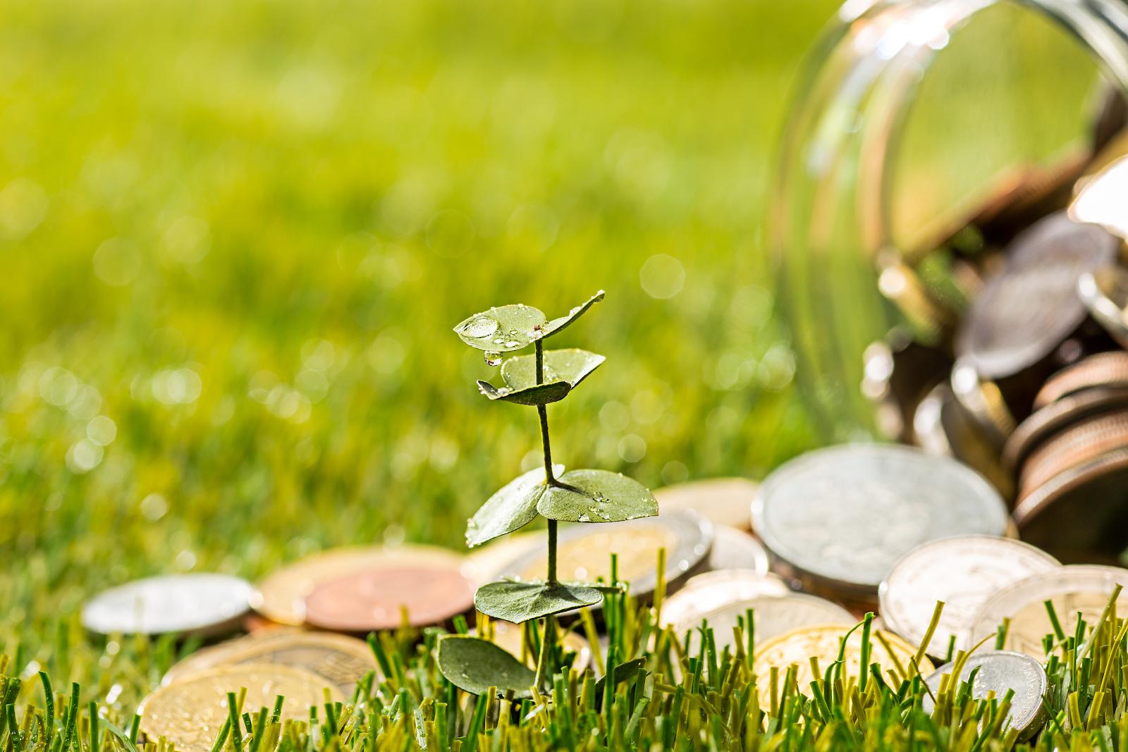Dow Jones de Sustentabilidade: empresas sustentáveis são mais capazes de gerar valor a longo prazo a seus acionistas
