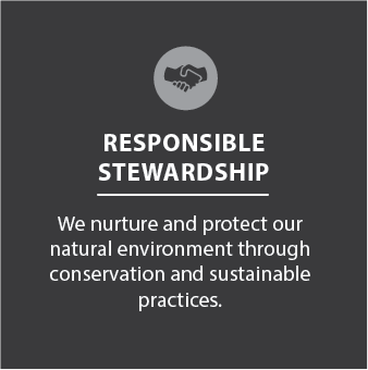 Responsible Stewardship