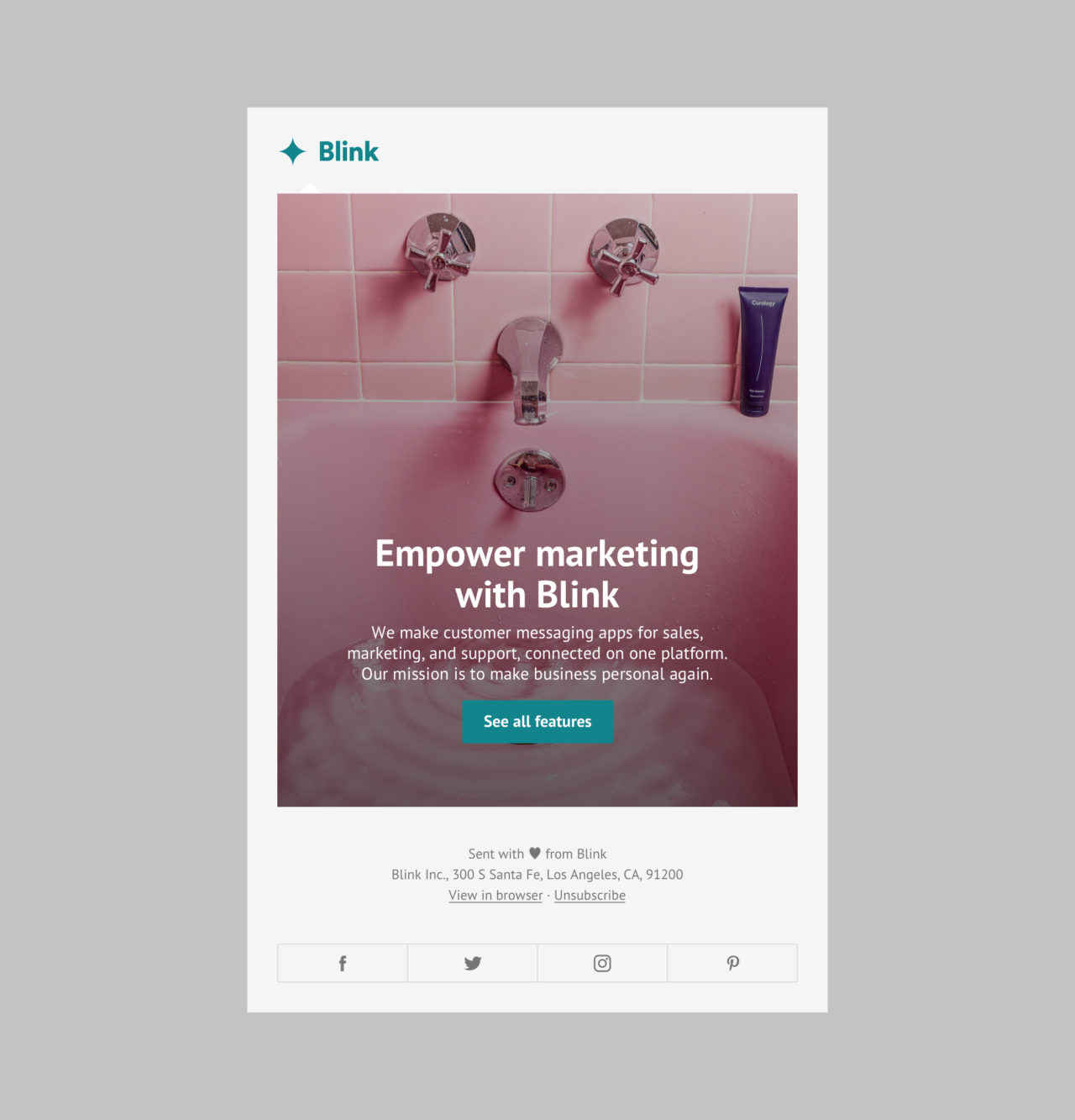 Blink: Launch Email