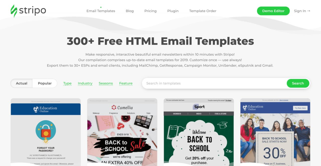 stripo email template