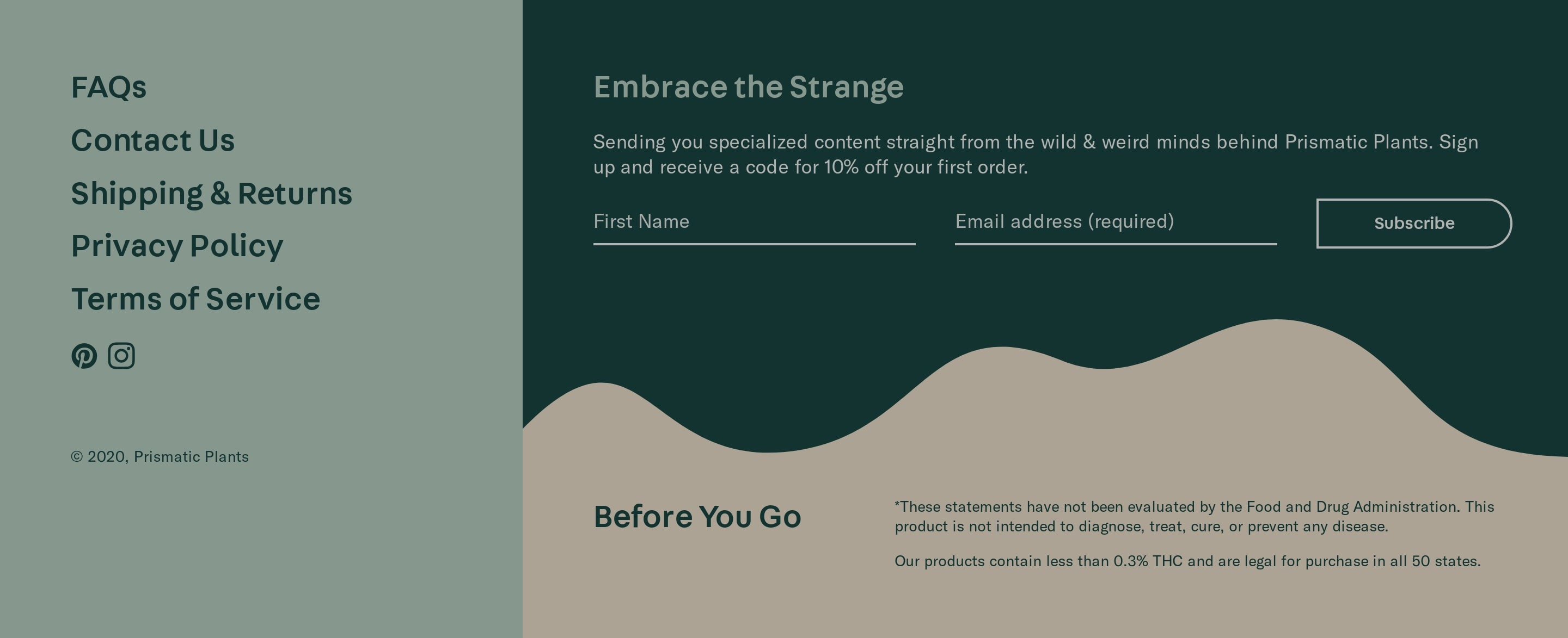 Footer with Website Navigation & Email Form
