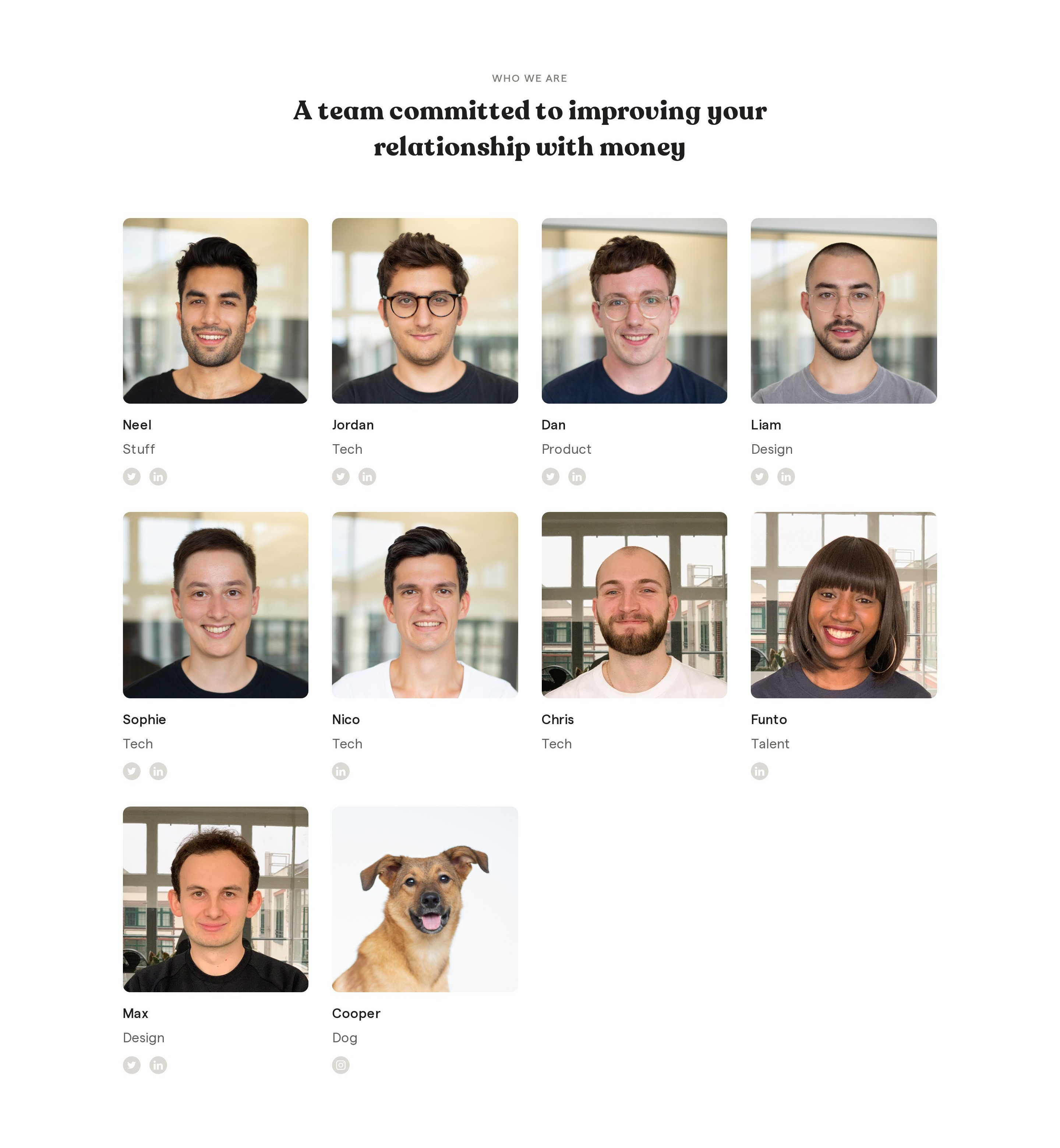 Team Members Grid with Photos