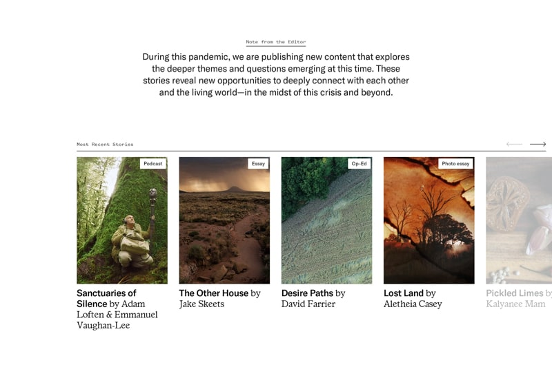 Scrollable Blog Posts with Vertical Images & Slider Arrows