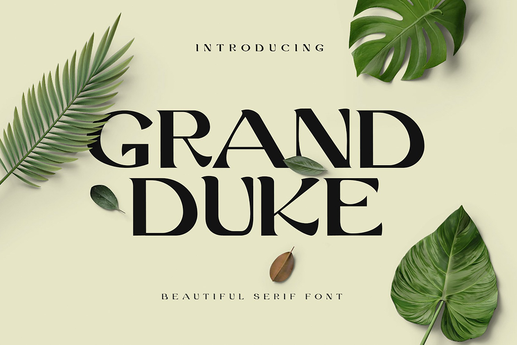 Stylish and Beautiful Serif Font