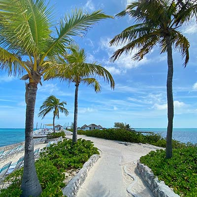 The palm-tree paradise of Pearl Island in The Bahamas