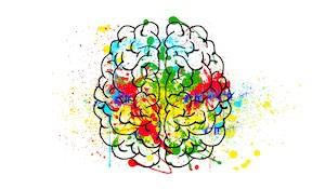 Aivot ja flow 3/3: Neurokemia huippusuoritusten takana