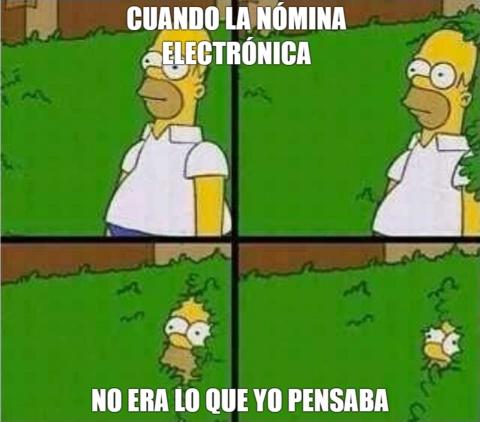 nomina electronica meme homero