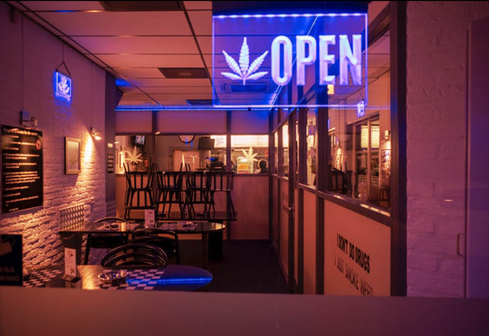 How cannabis brands and retailers can drive conversions while weathering the current climate of the cannabis industry.