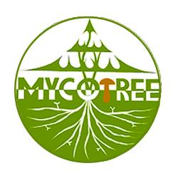 Mycotree website design