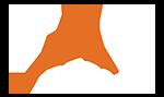 Website Design, SEO, Graphic Design | Tag Design