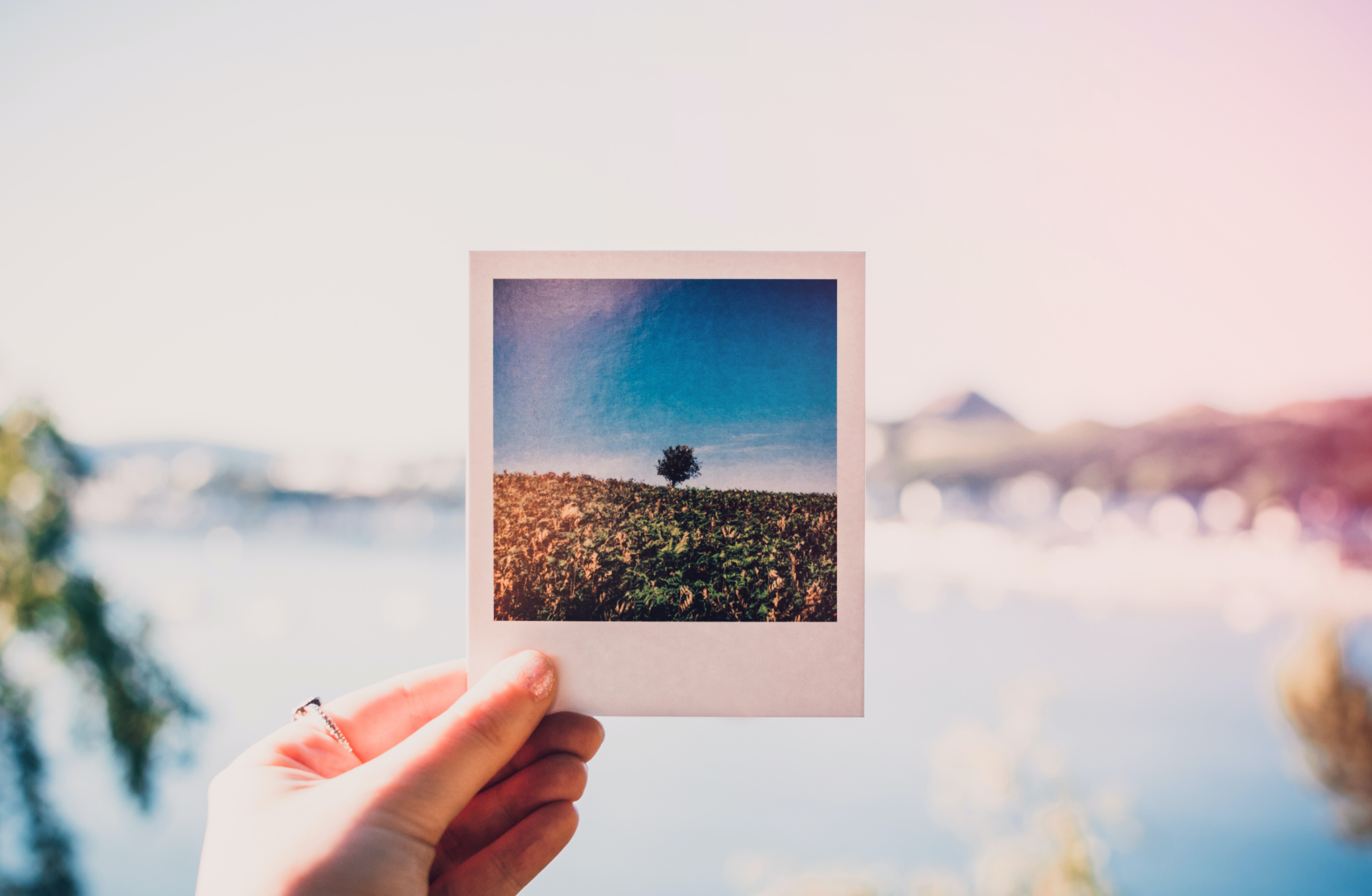 Polaroid photograph illustrates the link between epilepsy and memory loss