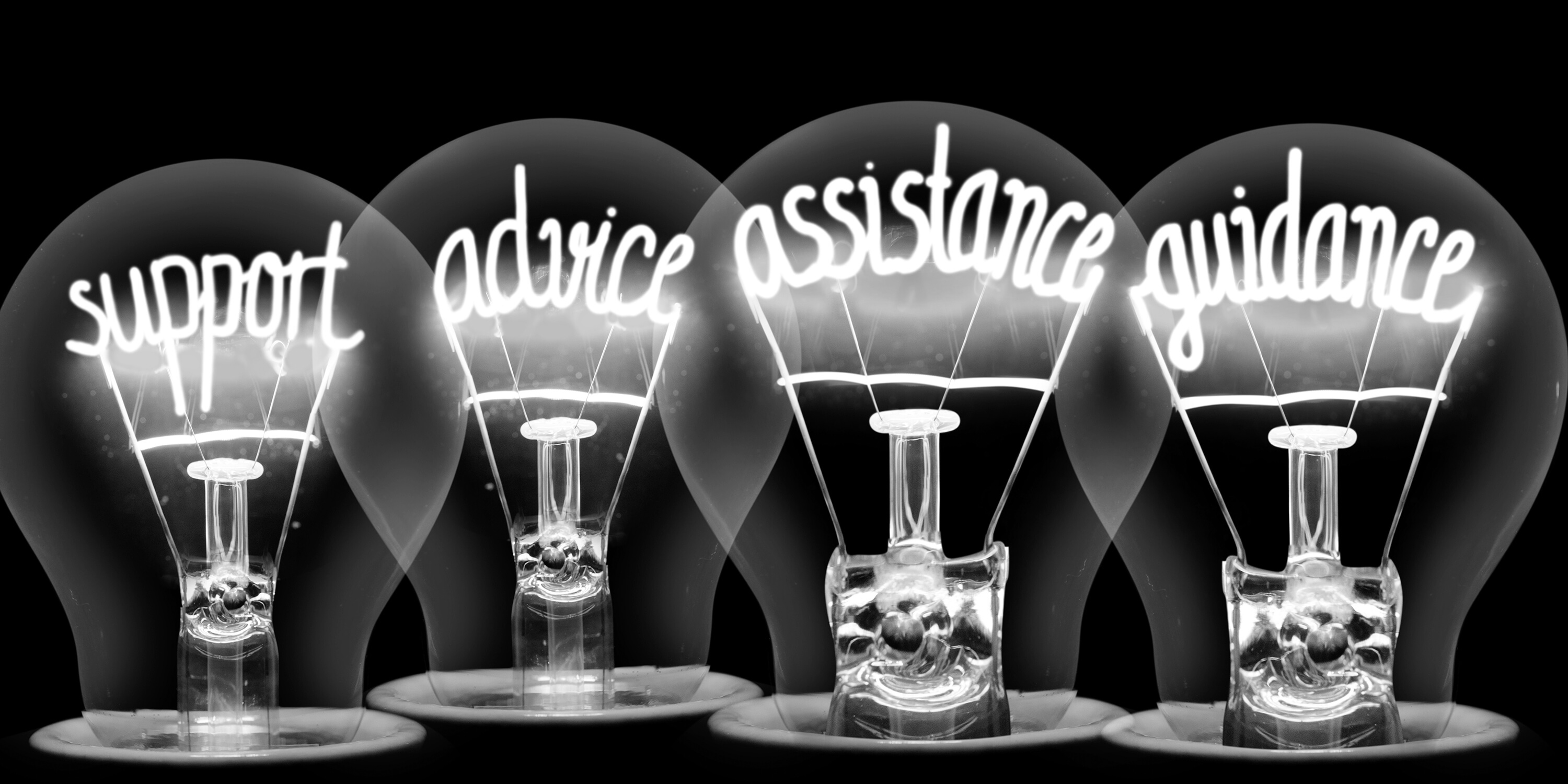 Image of 4 lightbulbs with the words Support, Advice, Assistance and Guidance inside.