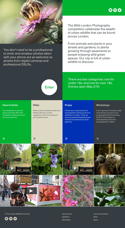London Wildlife Trust homepage design - bottom