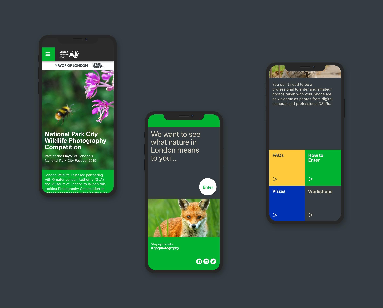 London Wildlife Trust website design displayed in three mobile phones