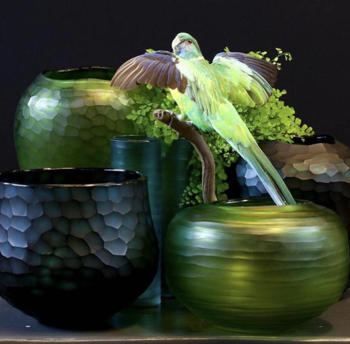 decoracion flores taxidermia madrid