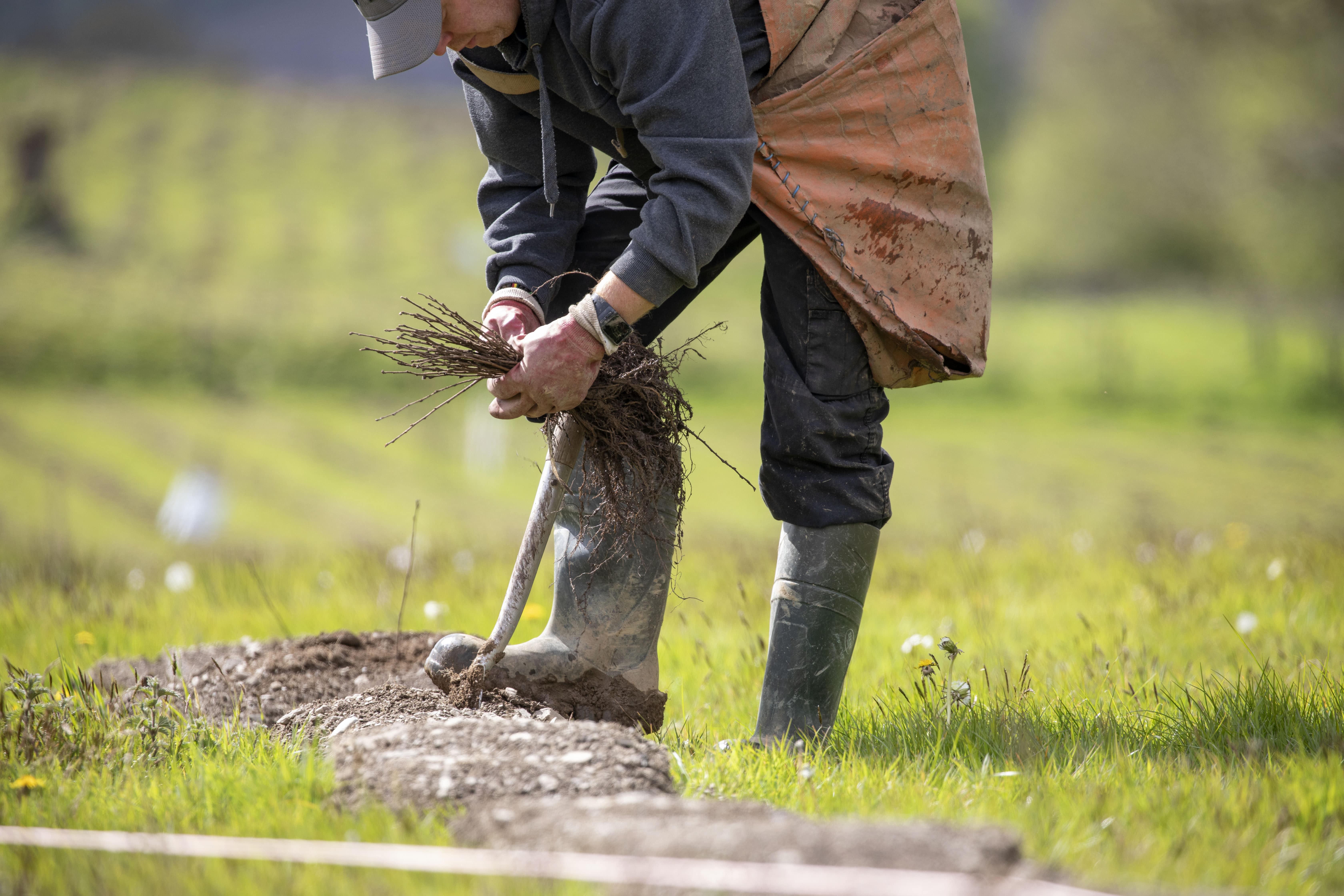 Man holding sticks in field