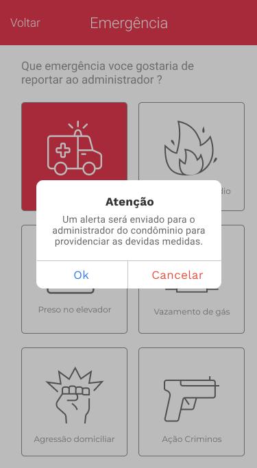 App noknox tela emergência selecionada