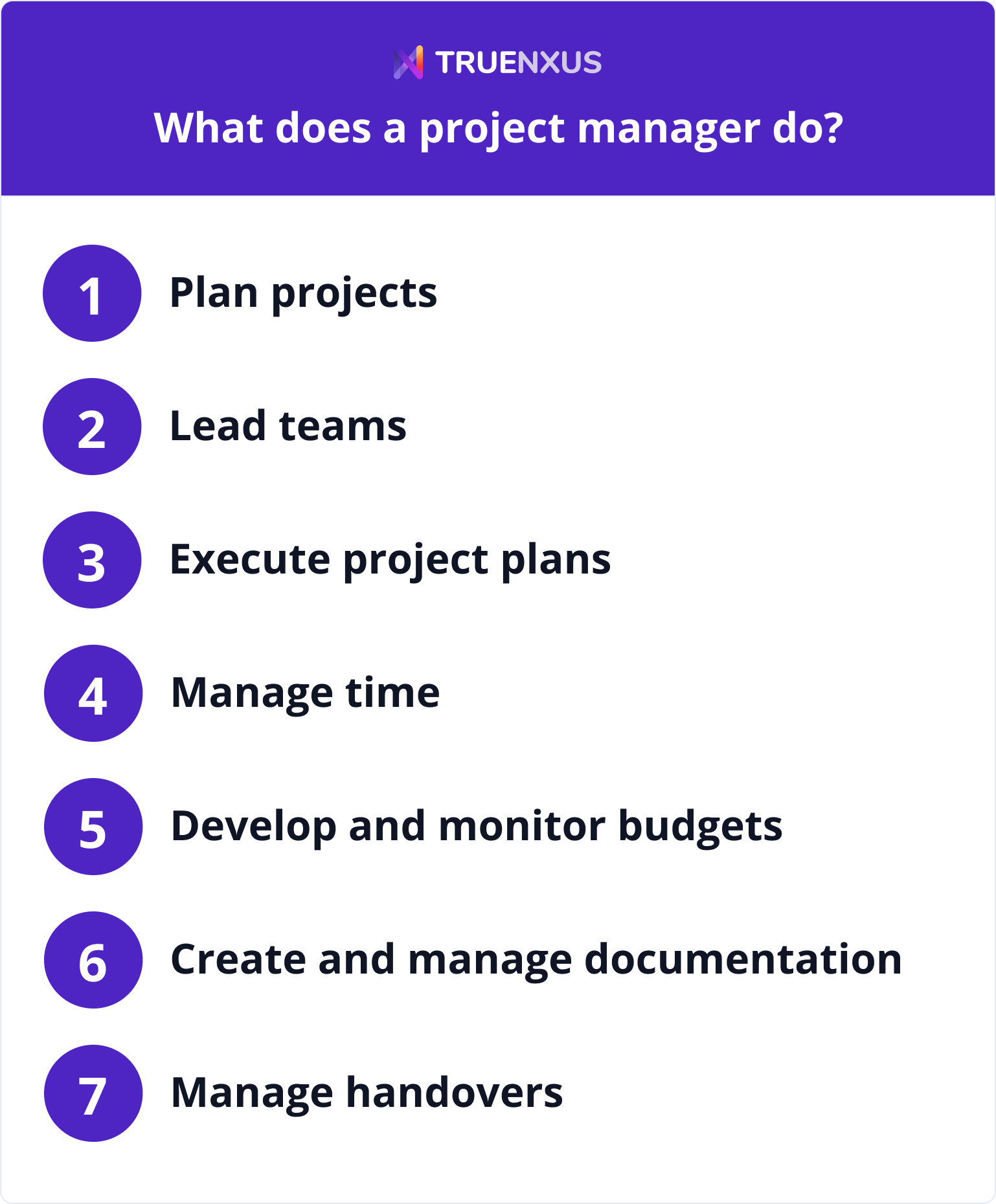 What does a project manager do infographic