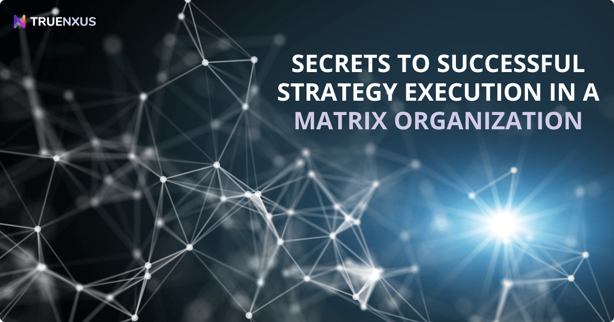 Secrets to Successful Strategy Execution in a Matrix Organization